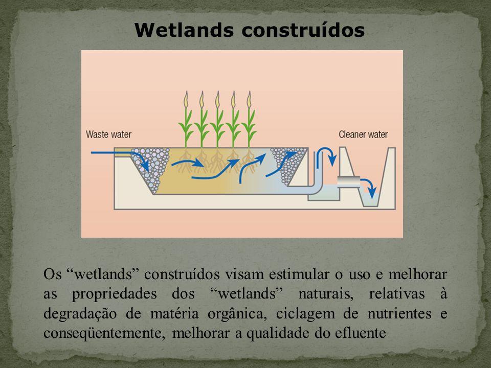 Wetlands construídos Os wetlands construídos visam estimular o uso e melhorar as propriedades dos wetlands naturais, relativas à degradação de matéria