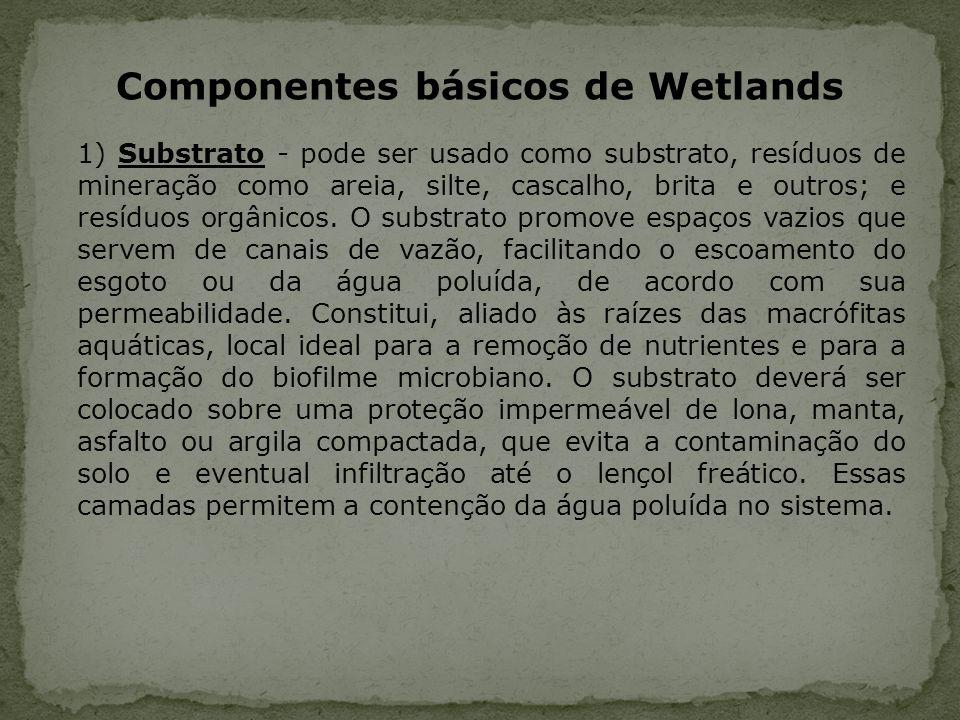 Componentes básicos de Wetlands 1) Substrato - pode ser usado como substrato, resíduos de mineração como areia, silte, cascalho, brita e outros; e res