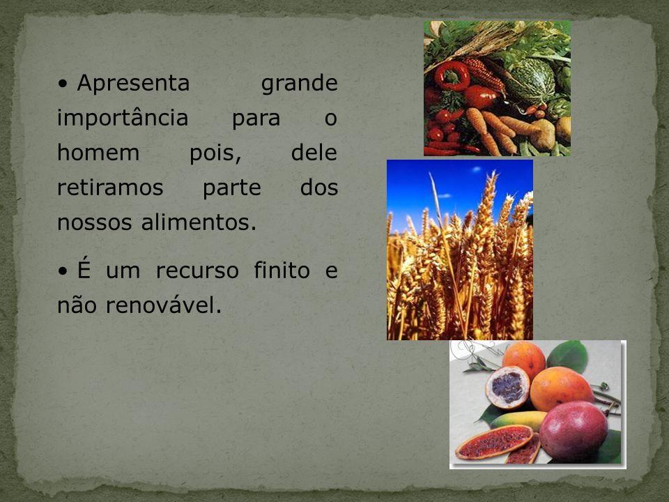Apresenta grande importância para o homem pois, dele retiramos parte dos nossos alimentos. É um recurso finito e não renovável.