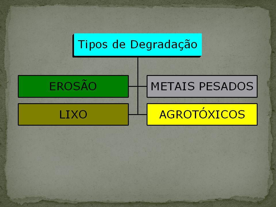 Componentes básicos de Wetlands 1) Substrato - pode ser usado como substrato, resíduos de mineração como areia, silte, cascalho, brita e outros; e resíduos orgânicos.