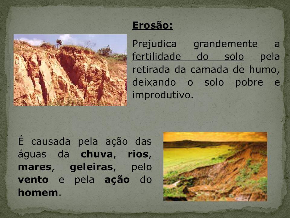 - Poucos estudos sobre fitorremediação, não sendo uma tecnologia amplamente aceita pelos órgãos de controle ambiental.