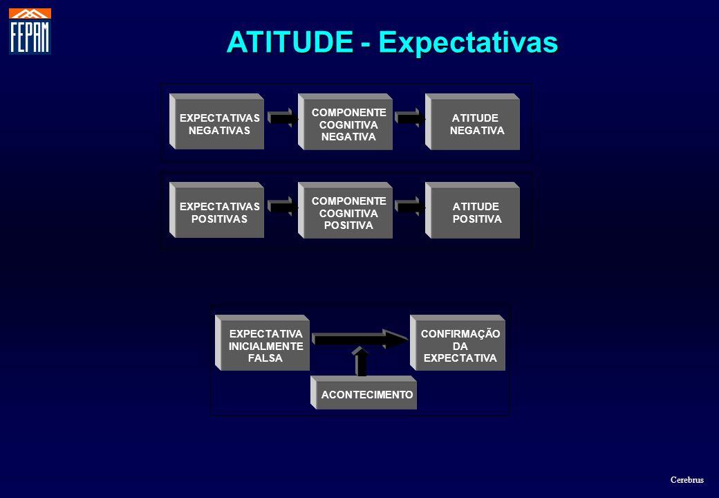 EXPECTATIVA INICIALMENTE FALSA ACONTECIMENTO CONFIRMAÇÃO DA EXPECTATIVA COMPONENTE COGNITIVA NEGATIVA ATITUDE NEGATIVA EXPECTATIVAS NEGATIVAS COMPONEN