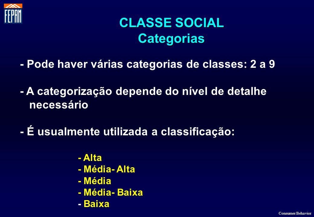 CLASSE SOCIAL Categorias - Pode haver várias categorias de classes: 2 a 9 - A categorização depende do nível de detalhe necessário - É usualmente util