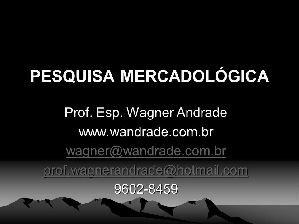 PESQUISA MERCADOLÓGICA Prof. Esp. Wagner Andrade www.wandrade.com.br wagner@wandrade.com.br prof.wagnerandrade@hotmail.com 9602-8459
