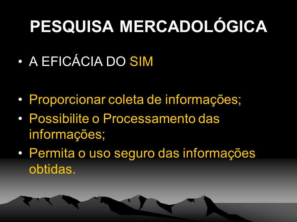 PESQUISA MERCADOLÓGICA A EFICÁCIA DO SIM Proporcionar coleta de informações; Possibilite o Processamento das informações; Permita o uso seguro das inf