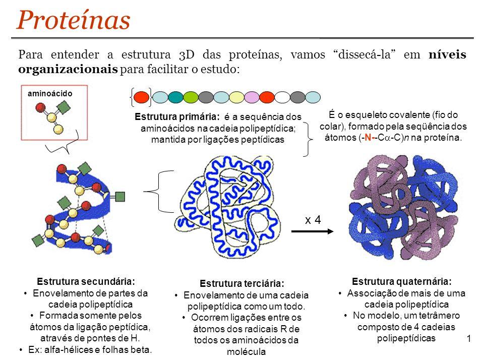 Proteínas 1 Estrutura primária: é a sequência dos aminoácidos na cadeia polipeptídica; mantida por ligações peptídicas aminoácido É o esqueleto covale