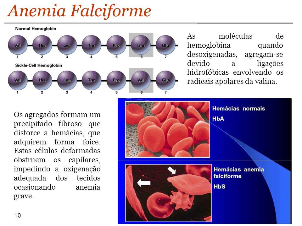 10 Anemia Falciforme As moléculas de hemoglobina quando desoxigenadas, agregam-se devido a ligações hidrofóbicas envolvendo os radicais apolares da va