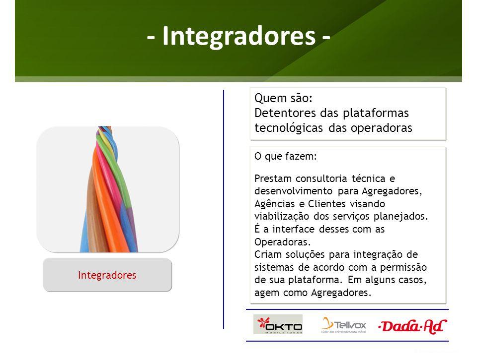 - Integradores - O que fazem: Prestam consultoria técnica e desenvolvimento para Agregadores, Agências e Clientes visando viabilização dos serviços pl