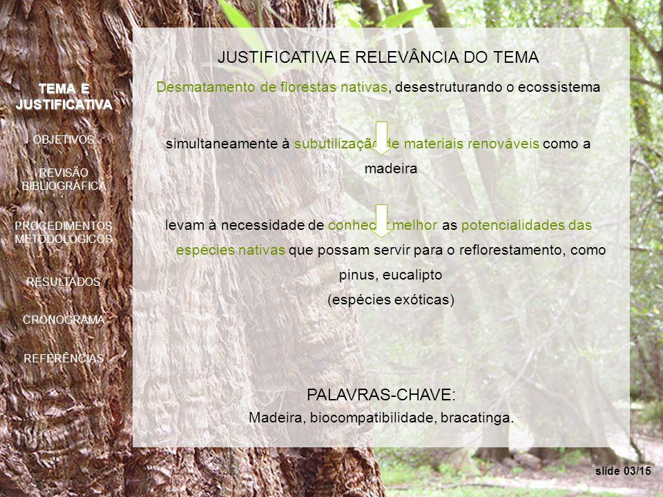 slide 03/15 PALAVRAS-CHAVE: Madeira, biocompatibilidade, bracatinga. JUSTIFICATIVA E RELEVÂNCIA DO TEMA Desmatamento de florestas nativas, desestrutur