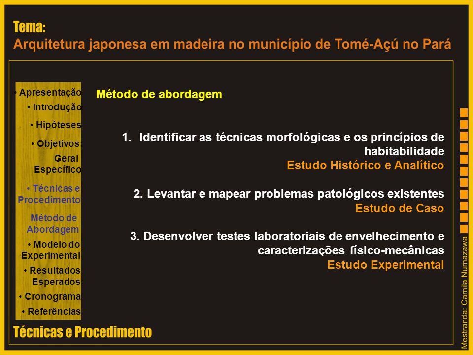 Apresentação Introdução Hipóteses Objetivos: Específico Geral Técnicas e Procedimento Método de Abordagem Modelo do Experimental Resultados Esperados