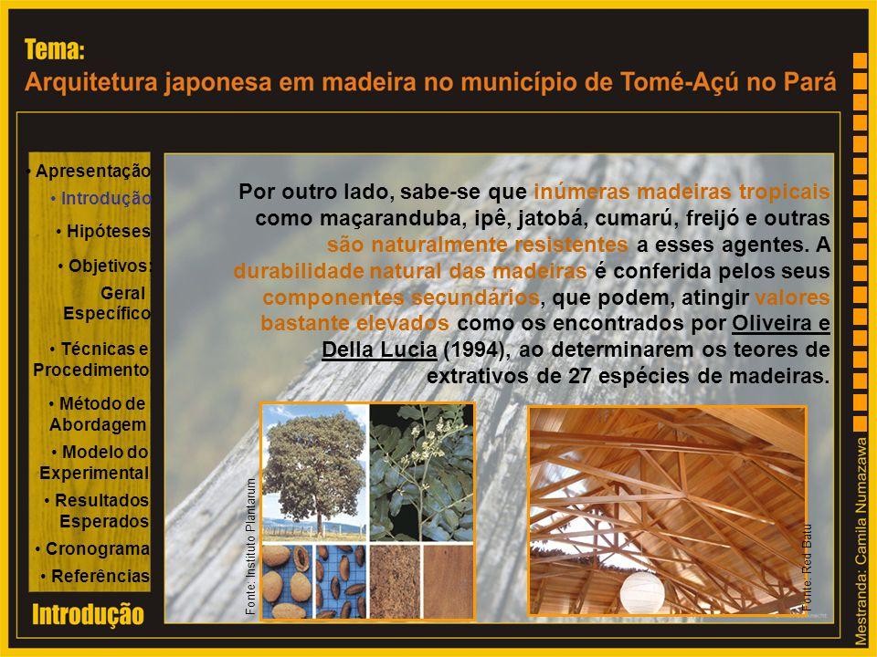 Por outro lado, sabe-se que inúmeras madeiras tropicais como maçaranduba, ipê, jatobá, cumarú, freijó e outras são naturalmente resistentes a esses ag
