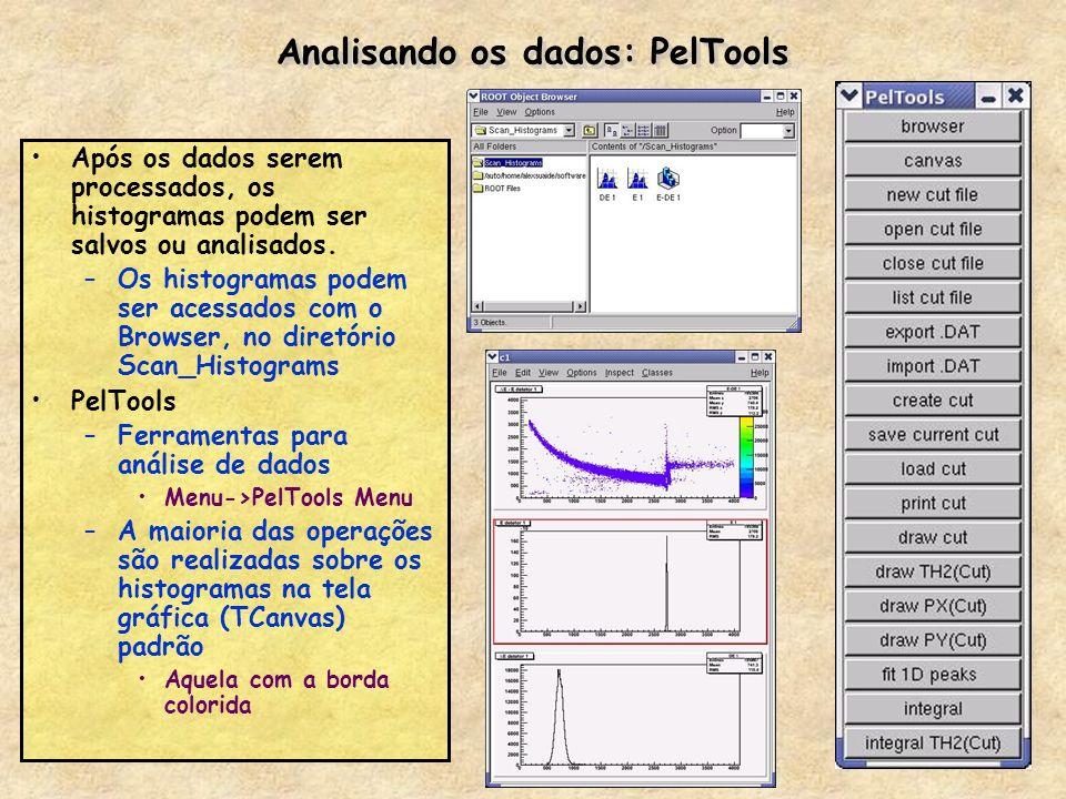 Analisando os dados: PelTools Após os dados serem processados, os histogramas podem ser salvos ou analisados. –Os histogramas podem ser acessados com