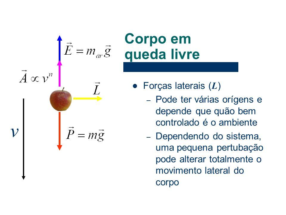 Forças laterais ( L ) – Pode ter várias orígens e depende que quão bem controlado é o ambiente – Dependendo do sistema, uma pequena pertubação pode al