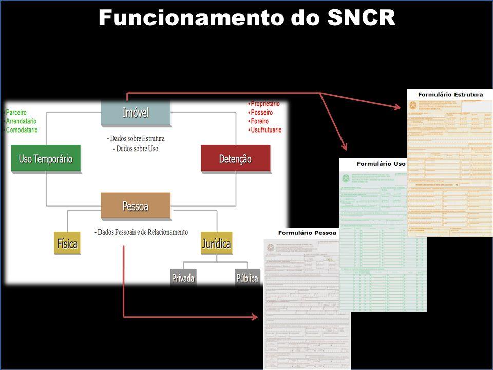 Ministério do Desenvolvimento Agrário Funcionamento do SNCR
