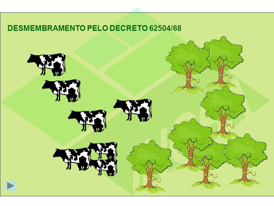 DESMEMBRAMENTO PELO DECRETO 62504/68