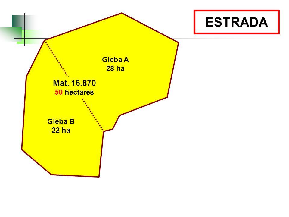 Gleba A 28 ha Gleba B 22 ha Mat. 16.870 50 hectares ESTRADA