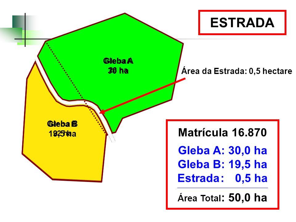 Gleba A 30 ha ESTRADA Gleba A 28 ha Gleba B 19,5 ha Gleba B 22 ha Área da Estrada: 0,5 hectare Matrícula 16.870 Gleba A: 30,0 ha Gleba B: 19,5 ha Estr