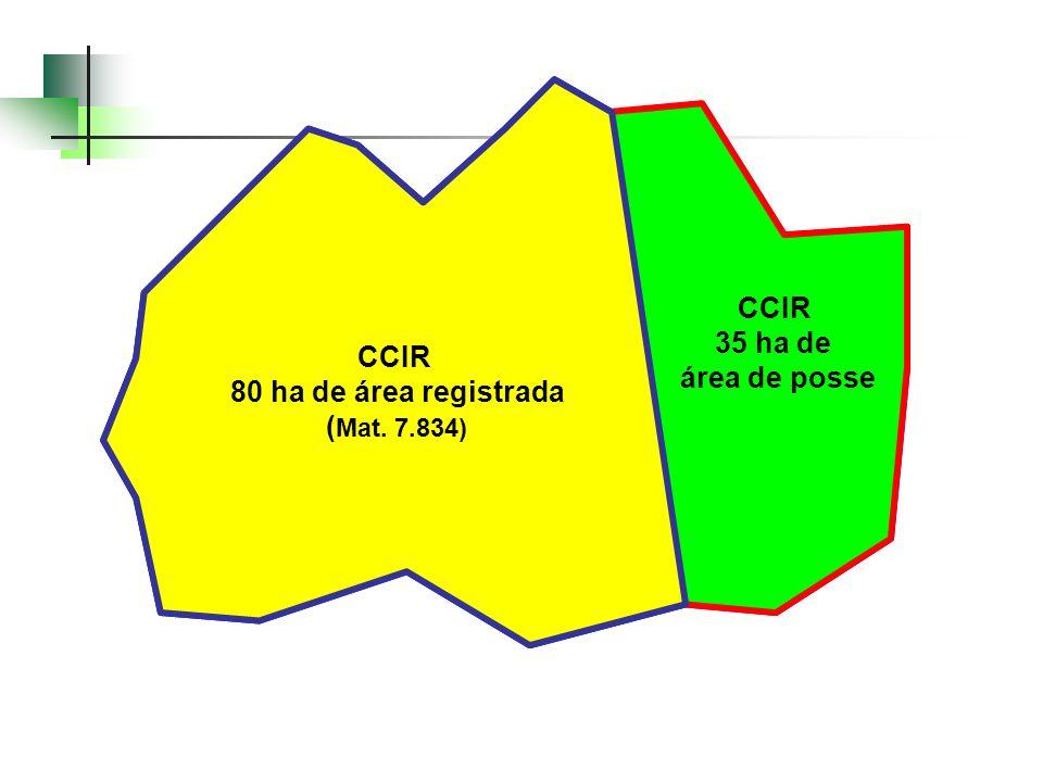 Mat. 7.834: 80 ha CCIR: 80 + 35 = 115 ha Geo: 118,3 ha CCIR 80 ha de área registrada ( Mat. 7.834) CCIR 35 ha de área de posse