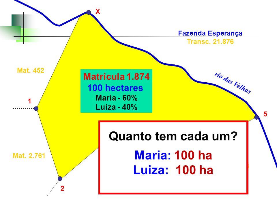 Matrícula 1.874 100 hectares Maria - 60% Luiza - 40% Posse de Luiz Arruda Mat. 452 Transc. 35.823 Mat. 2.761 3 2 4 X 5 1 Fazenda Esperança Transc. 21.