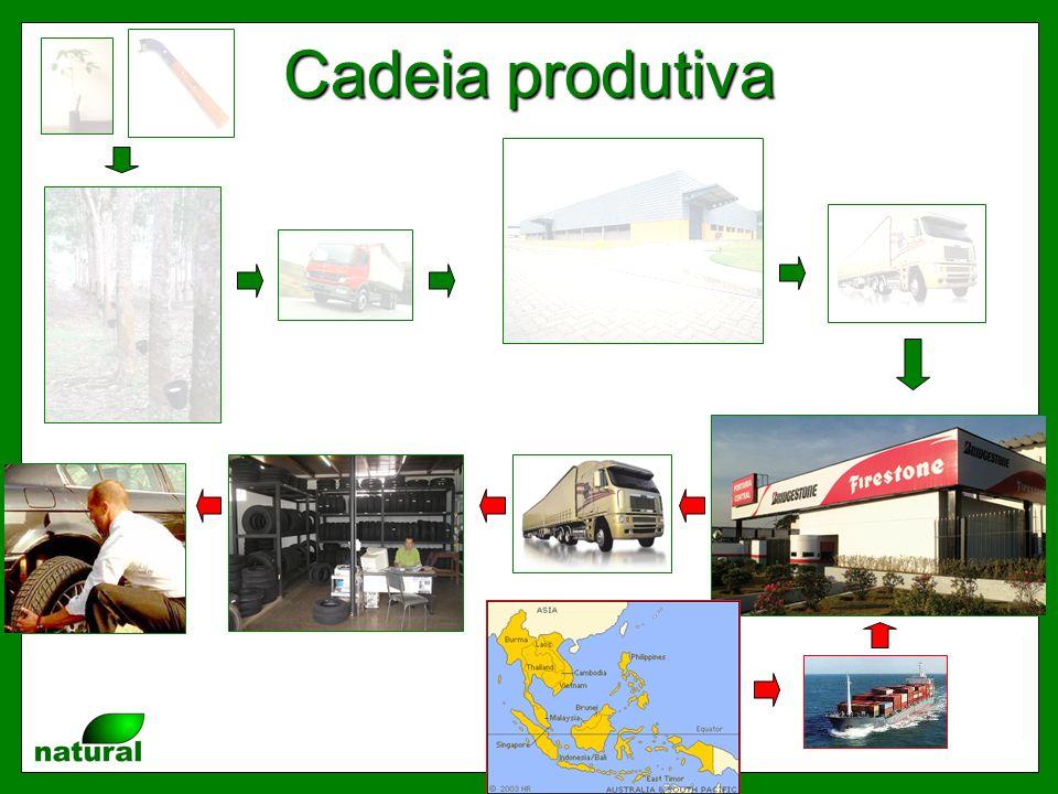 FONTE DE INFORMAÇÕES PARA A HEVEICUTURA:www.borrachanatural.agr.br Patrocinadores gameiro@usp.br