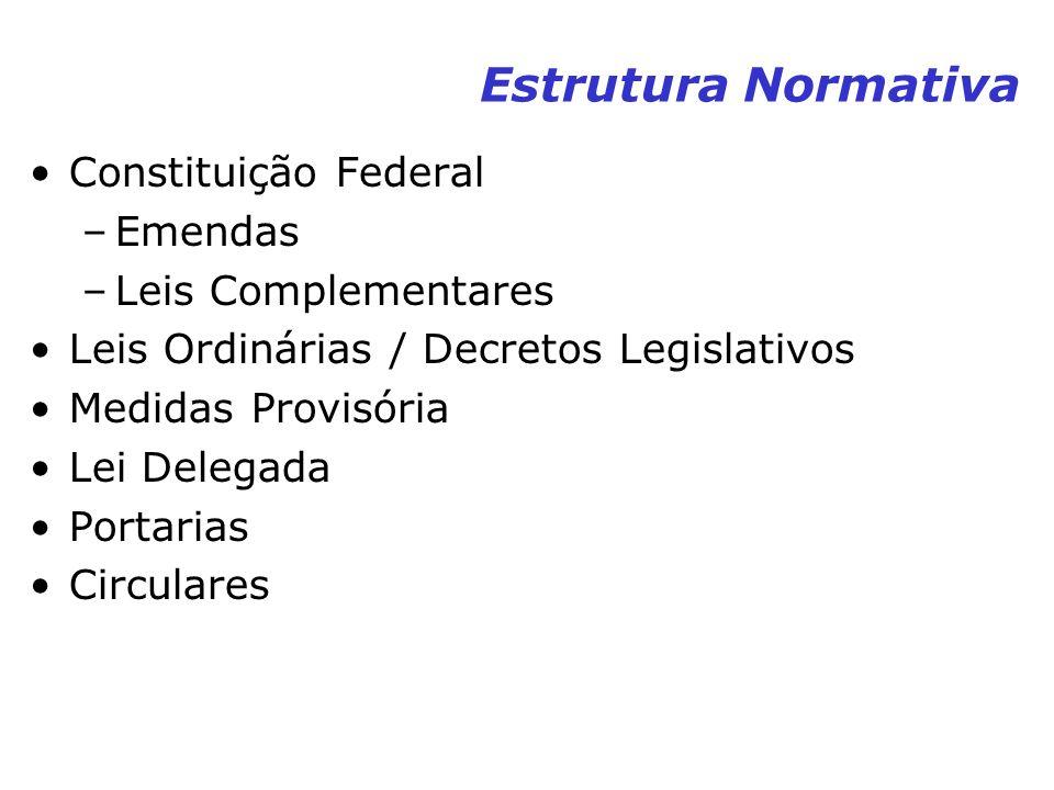 Estrutura Normativa Constituição Federal –Emendas –Leis Complementares Leis Ordinárias / Decretos Legislativos Medidas Provisória Lei Delegada Portari