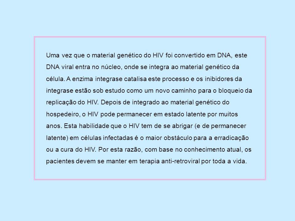 Uma vez que o material genético do HIV foi convertido em DNA, este DNA viral entra no núcleo, onde se integra ao material genético da célula. A enzima