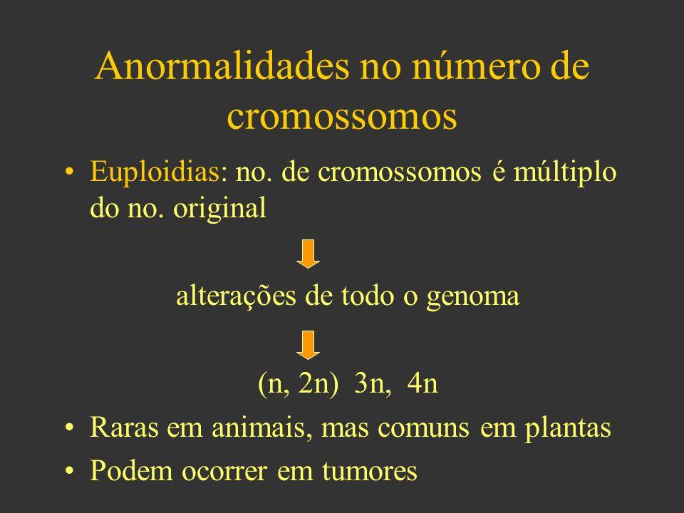 Anormalidades no número de cromossomos Euploidias: no.