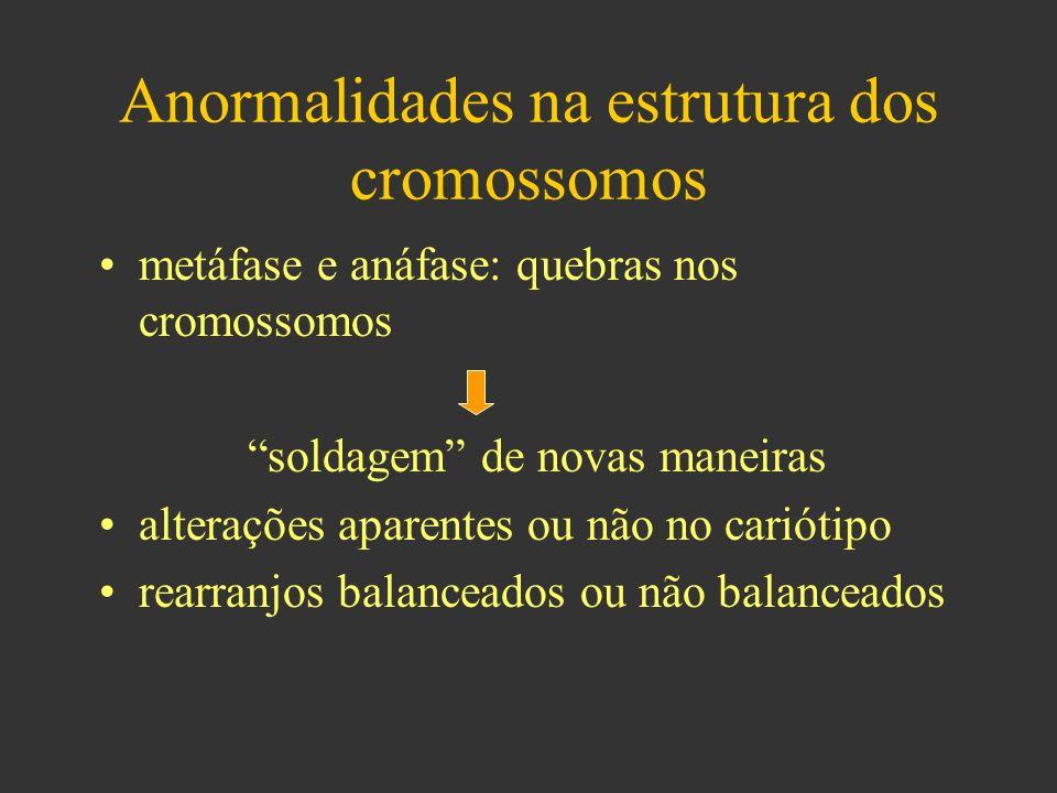 Anormalidades na estrutura dos cromossomos metáfase e anáfase: quebras nos cromossomos soldagem de novas maneiras alterações aparentes ou não no cariótipo rearranjos balanceados ou não balanceados