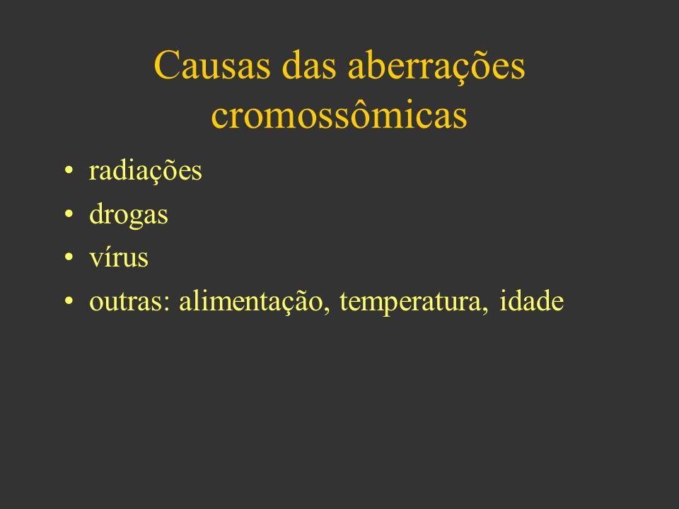 Causas das aberrações cromossômicas radiações drogas vírus outras: alimentação, temperatura, idade