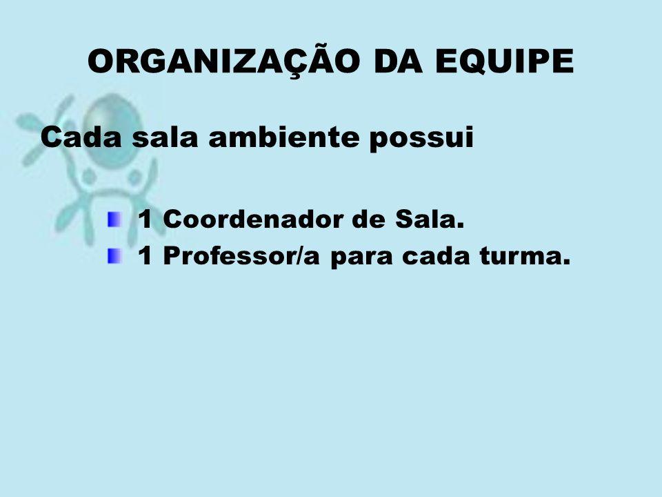 ORGANIZAÇÃO DA EQUIPE Cada sala ambiente possui 1 Coordenador de Sala. 1 Professor/a para cada turma.