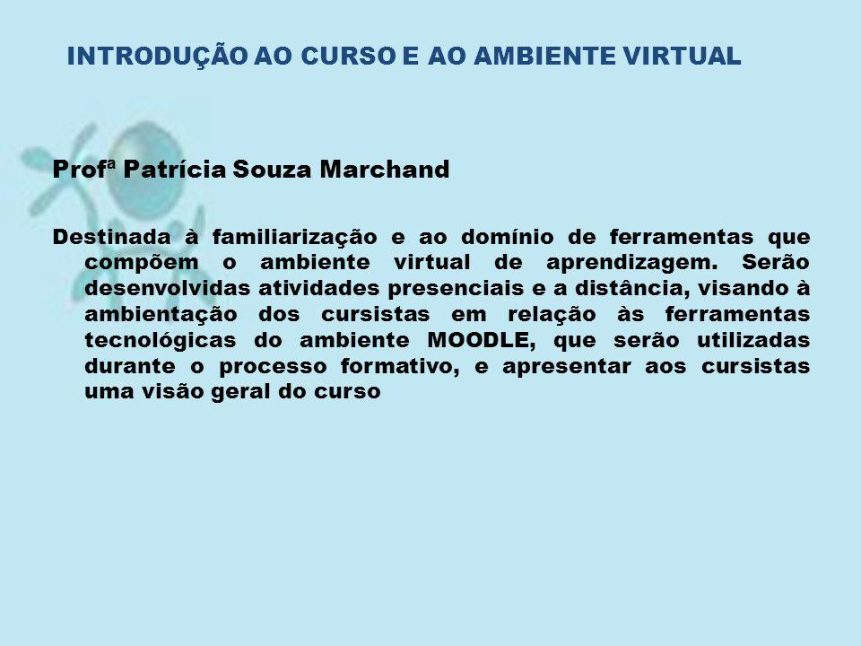 Profª Patrícia Souza Marchand Destinada à familiarização e ao domínio de ferramentas que compõem o ambiente virtual de aprendizagem. Serão desenvolvid