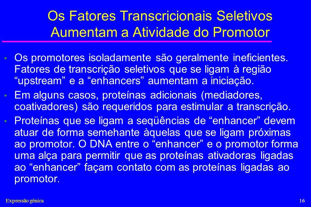 Expressão gênica16 Os Fatores Transcricionais Seletivos Aumentam a Atividade do Promotor Os promotores isoladamente são geralmente ineficientes. Fator