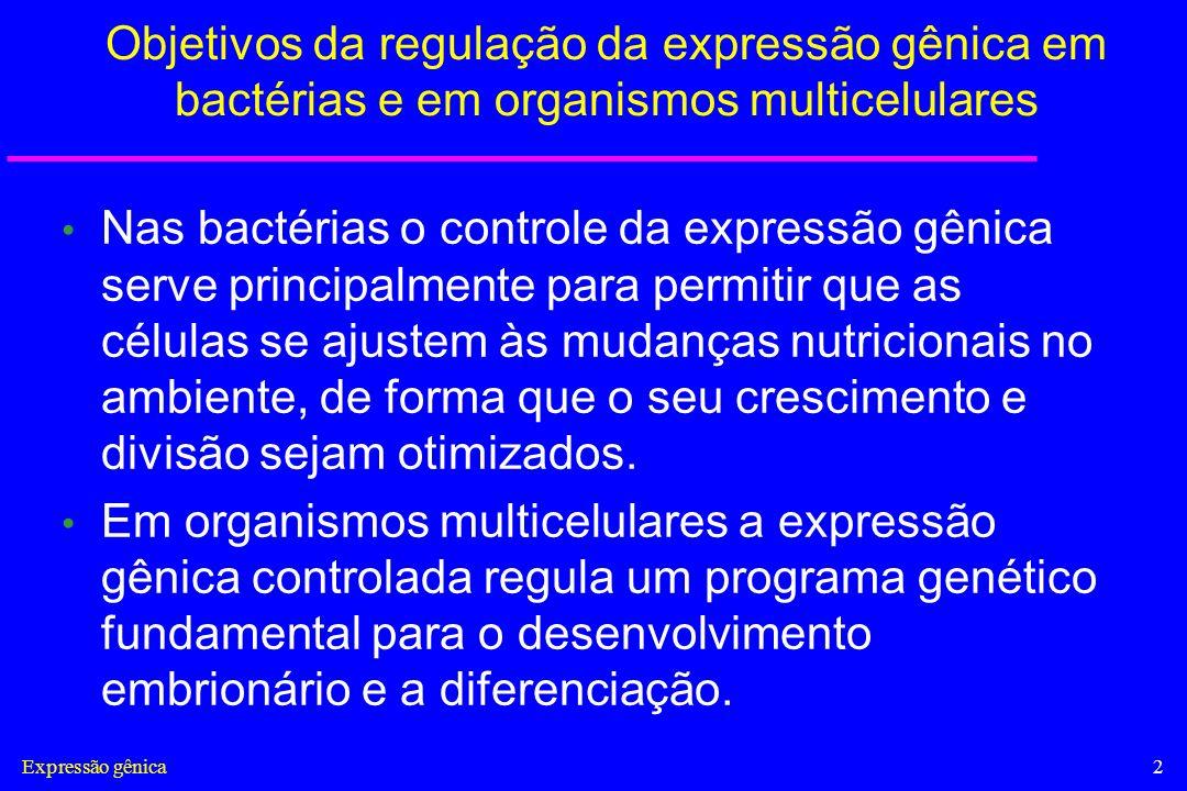 Expressão gênica13 Complexo TBP-DNA