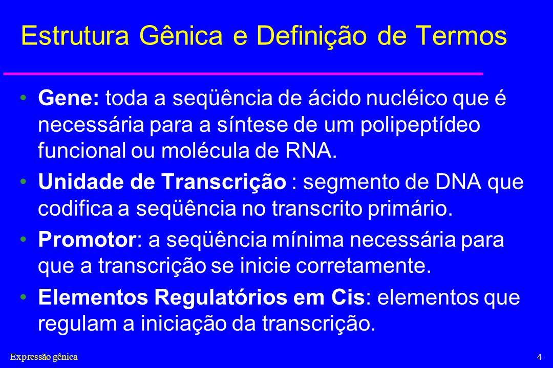 Expressão gênica4 Estrutura Gênica e Definição de Termos Gene: toda a seqüência de ácido nucléico que é necessária para a síntese de um polipeptídeo f