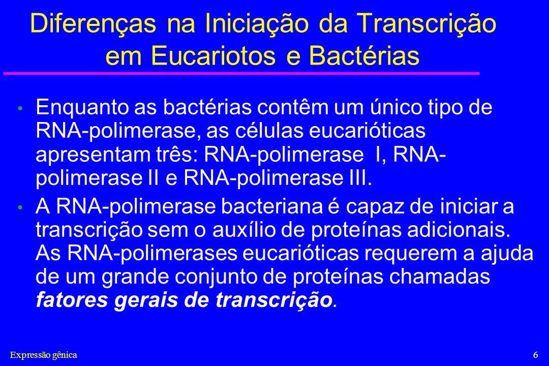 Expressão gênica7 Diferenças na Iniciação da Transcrição em Eucariotos e Bactérias Em eucariotos as proteínas reguladoras da expressão gênica (repressores e ativadores) podem influenciar a iniciação da transcrição, mesmo quando estão ligadas ao DNA a milhares de pares de nucleotídeos distante do promotor.