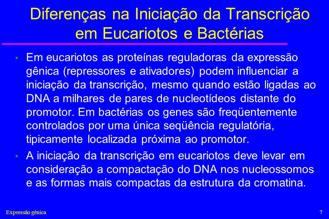 Expressão gênica7 Diferenças na Iniciação da Transcrição em Eucariotos e Bactérias Em eucariotos as proteínas reguladoras da expressão gênica (repress