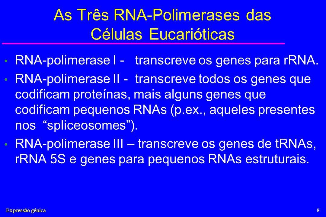 Expressão gênica9 Fatores Gerais de Transcrição Os fatores gerais de transcrição são responsáveis pelo posicionamento correto da RNA-polimerase no promotor, ajudam na separação das fitas de DNA para permitir o início da transcrição, e liberam a RNA- polimerase do promotor quando a transcrição se inicia.