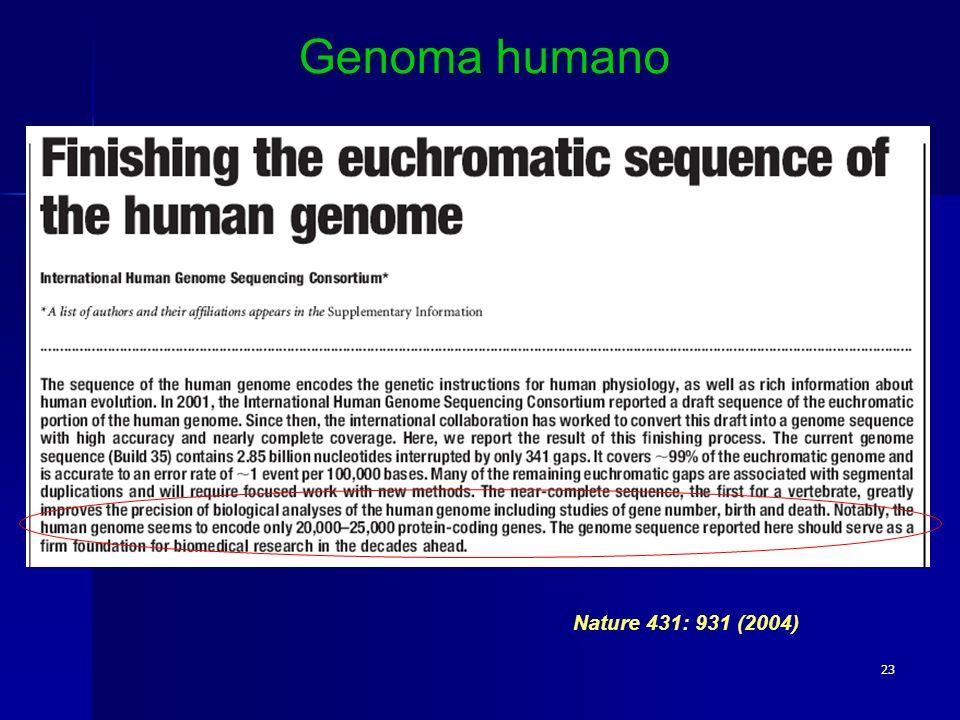 23 Nature 431: 931 (2004) Genoma humano
