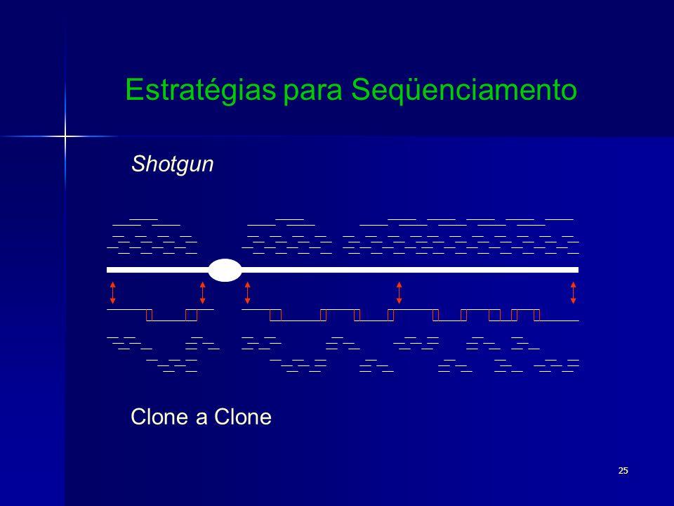 25 Shotgun Clone a Clone Estratégias para Seqüenciamento
