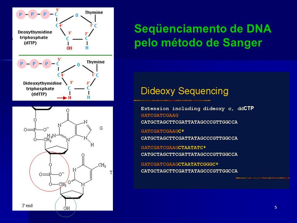 5 Seqüenciamento de DNA pelo método de Sanger