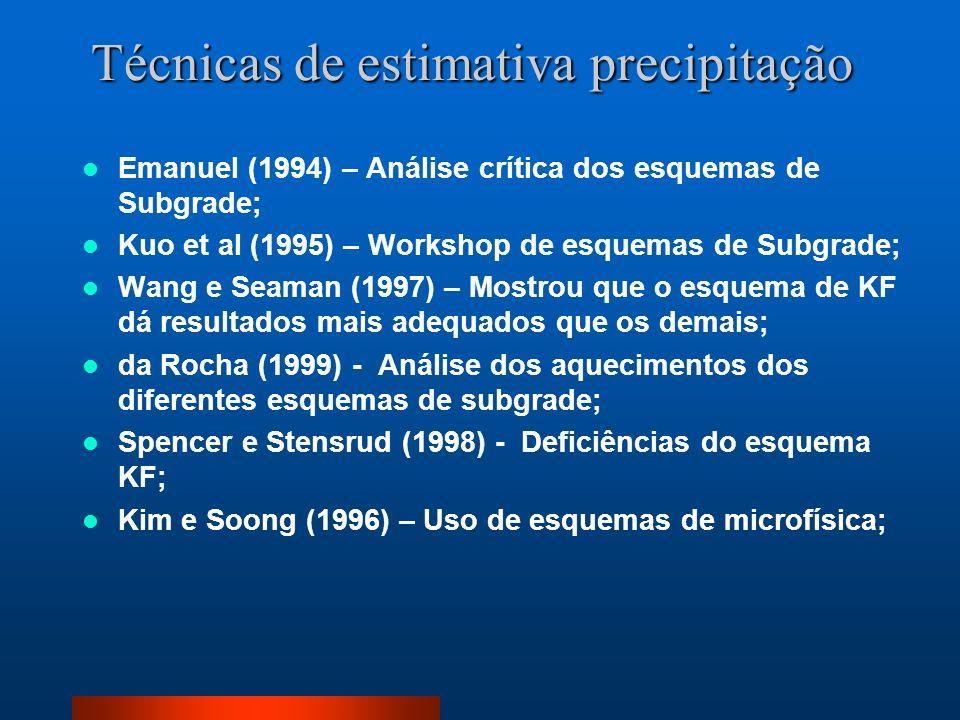 Técnicas de estimativa precipitação Emanuel (1994) – Análise crítica dos esquemas de Subgrade; Kuo et al (1995) – Workshop de esquemas de Subgrade; Wa