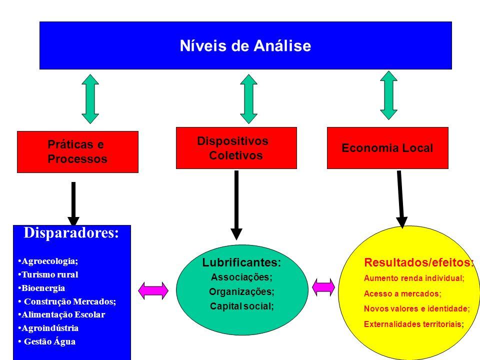 Níveis de Análise Práticas e Processos Dispositivos Coletivos Economia Local Lubrificantes: Associações; Organizações; Capital social; Resultados/efei
