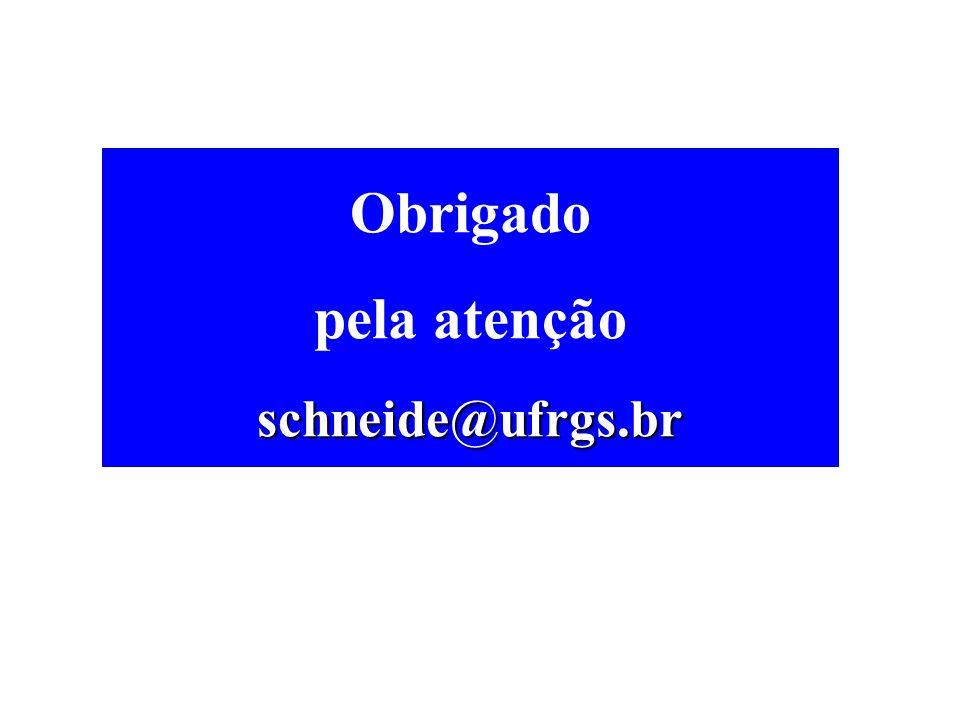 Obrigado pela atençãoschneide@ufrgs.br