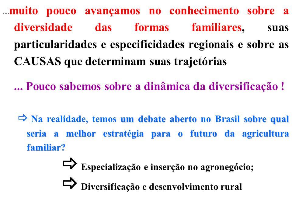 .... muito pouco avançamos no conhecimento sobre a diversidade das formas familiares, suas particularidades e especificidades regionais e sobre as CAU