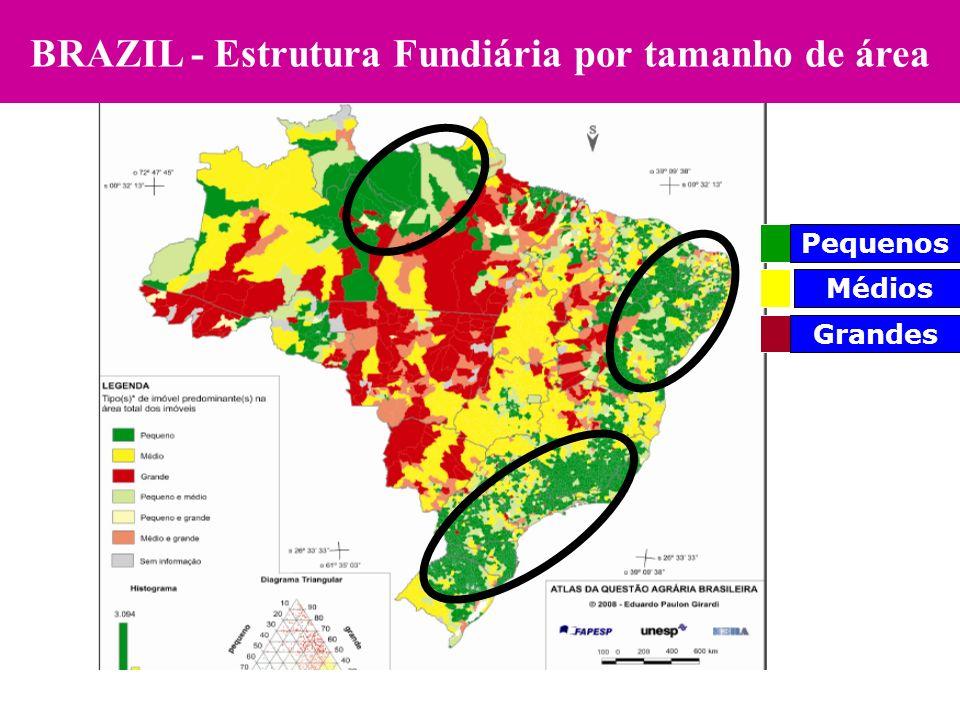 Pequenos Médios Grandes BRAZIL - Estrutura Fundiária por tamanho de área
