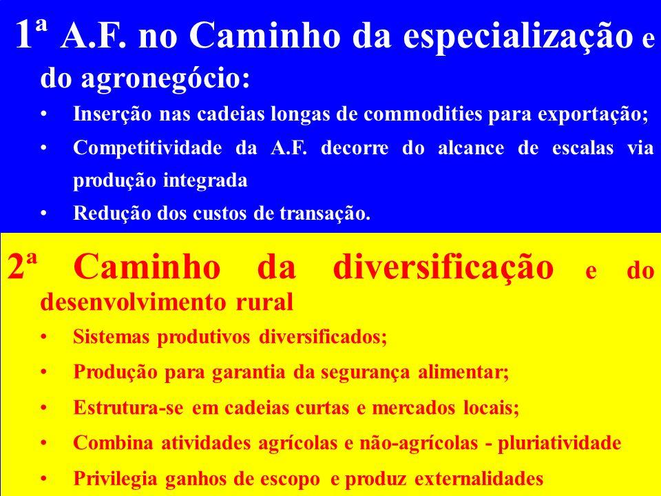 1ª A.F. no Caminho da especialização e do agronegócio: Inserção nas cadeias longas de commodities para exportação; Competitividade da A.F. decorre do