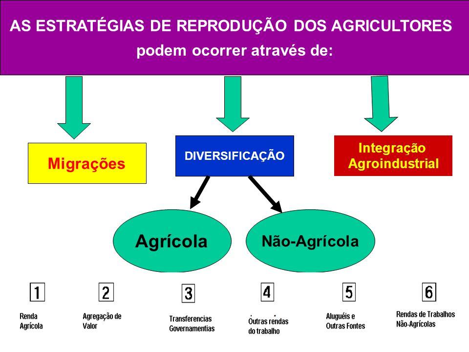 AS ESTRATÉGIAS DE REPRODUÇÃO DOS AGRICULTORES podem ocorrer através de: Migrações DIVERSIFICAÇÃO Integração Agroindustrial Agrícola Não-Agrícola