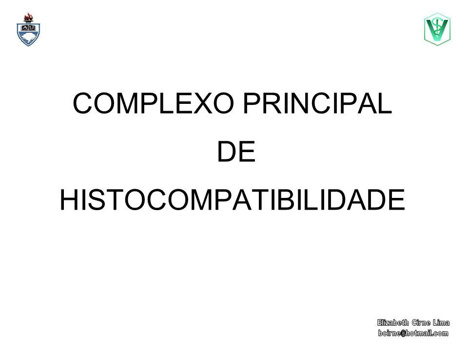 MHC MHC = Major Histocompatibility Complex http://www-medlib.med.utah.edu/WebPath/jpeg5/CV171 http://tpis.upmc.edu/tpis/images/C00005c