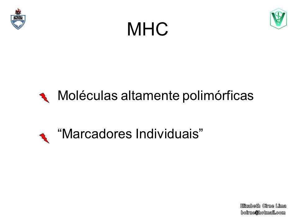 MHC Classe I Classe II