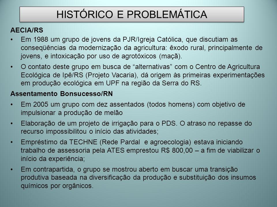 HISTÓRICO E PROBLEMÁTICA AECIA/RS Em 1988 um grupo de jovens da PJR/Igreja Católica, que discutiam as conseqüências da modernização da agricultura: êx